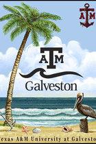 THROW/MANUAL/A&M GALVESTON