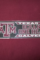 STICKER/MAROON/OCEANS & 1 HEALTH